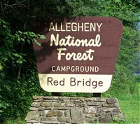 Red Bridge ANF Campground - Kane, PA