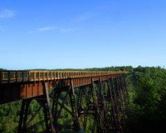 Kinzua Viaduct - Kinzua Bridge State Park in Mount Jewett, PA