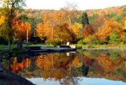 Allegany State Park - Salamanca, NY