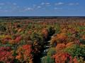 Kinzua Byway (aerial view) - Autumn - Mt.Jewett, PA