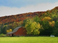 Fall along Route 6 - Port Allegany,PA