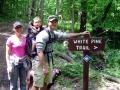 ANF Trail Central - White Pine Trail - Bradford, PA
