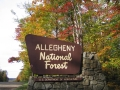 Allegheny National Forest Sign - Fall Foliage, McKean County, PA