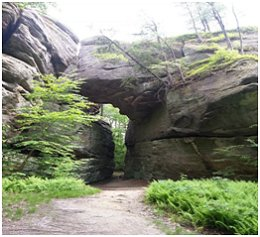 Rock City Park - Olean, NY