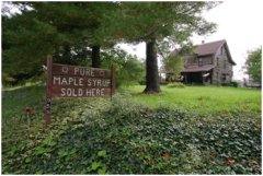 Stroup's Pure Maple Syrup - Kane, PA
