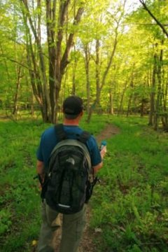 Geocaching with GPS in the Allegheny National Forest region