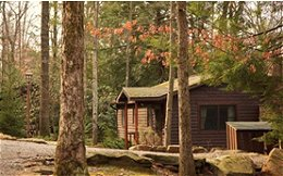 Black Bear Cabins - Cooksburg, PA