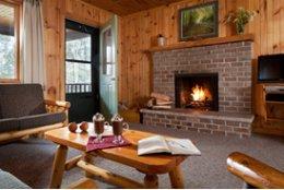 Black Bear Cabins - Cooksburg, PA