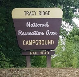 Tracy Ridge – ANF Campground - Bradford, PA