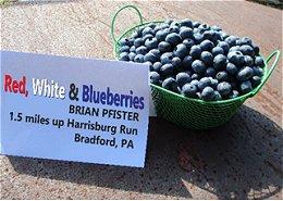 Red, White & Blueberries - Bradford, PA